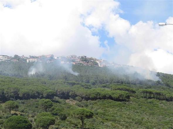 Kuzey Ormanları İstanbul Maltepe mevkiinde 4 ayrı noktada yangın çıktı