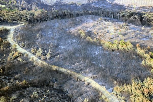 Keşan'daki orman yangınının verdiği tahribat havadan görüntülendi