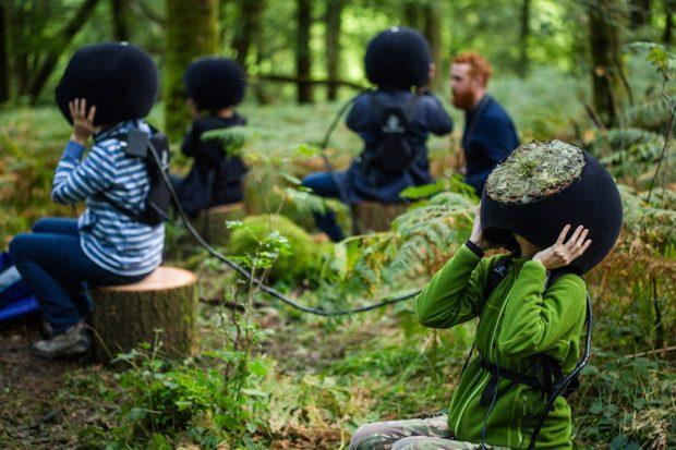 Ormanları bir de hayvanların gözünden görün