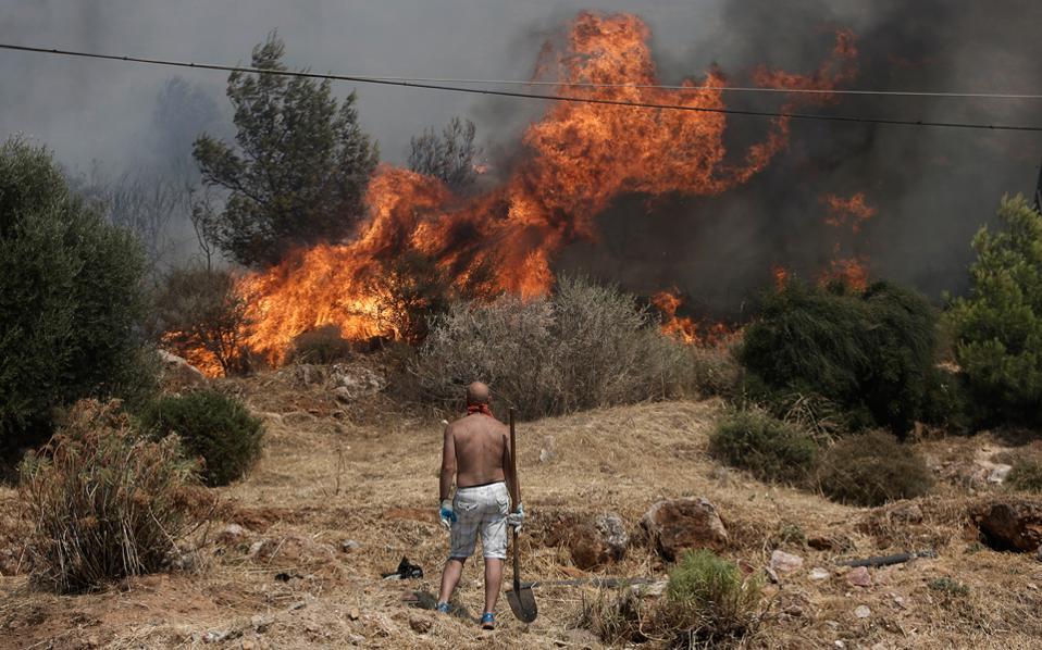 Sakız Adası'nda orman yangını