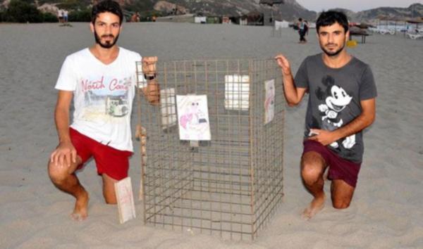 Patara Plajı'nda 195 caretta yuvası korunuyor