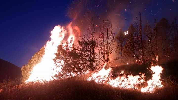 Erzincan'ın Bağlar Köyü'nde Yangın!