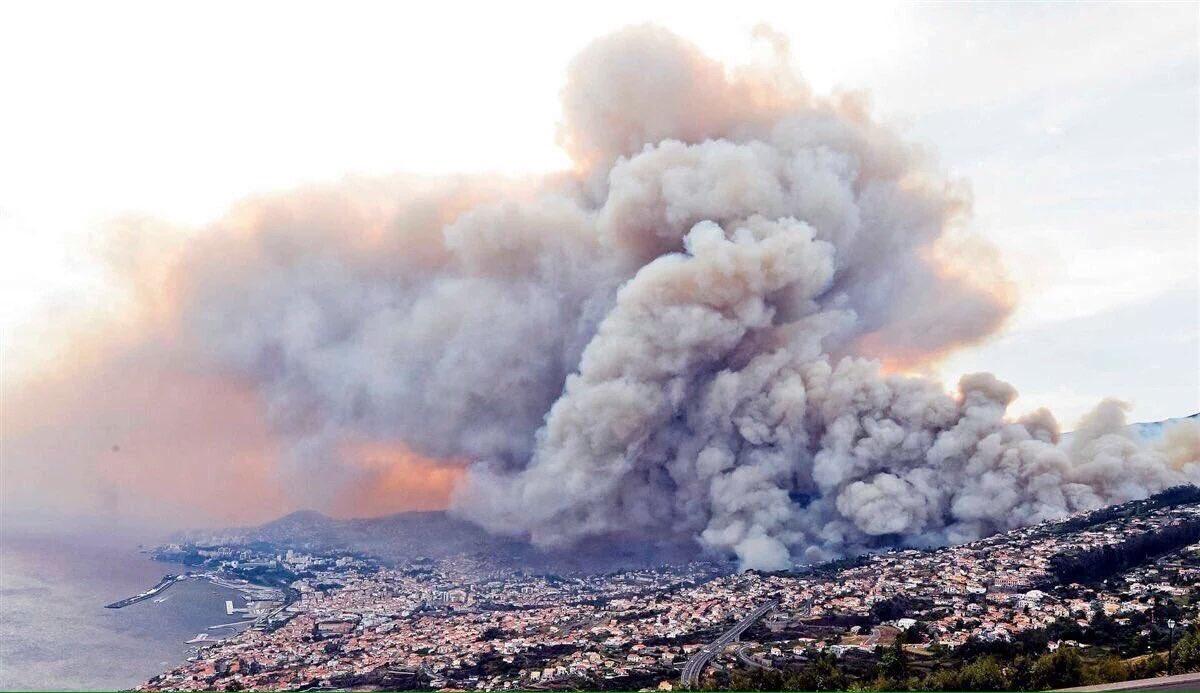 Portekiz'de orman yangınlarında 4 kişi öldü