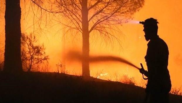 Kazdağları'nda yangını madenin atık suyuyla söndürdüler