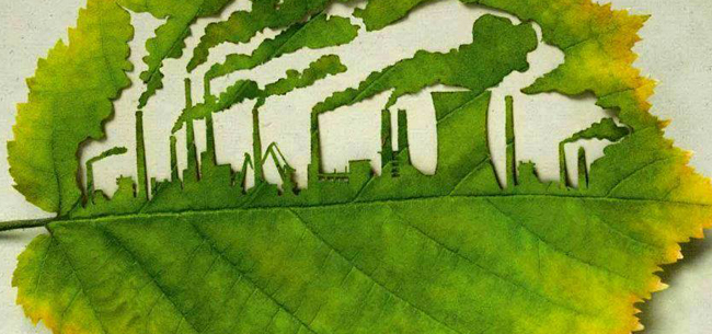 Doğa, insan ve kapitalizm