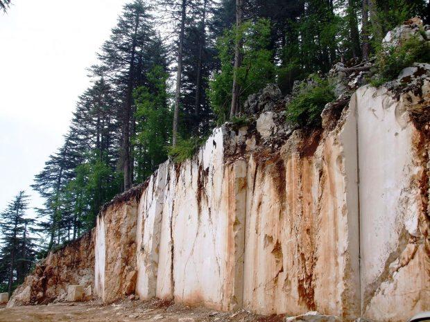 """""""Allah'ın taşını paraya çeviriyoruz"""" diyenlerin unuttuğu: Vahşi madencilik ağaçların yaşam kaynağını yok ediyor"""