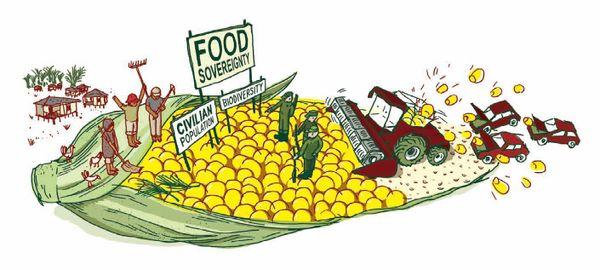 Ohal'de gıda egemenliği nasıl örgütlenebilir?