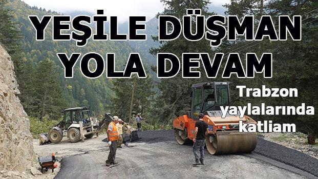Trabzon yayla ve ormanlarında büyük katliam