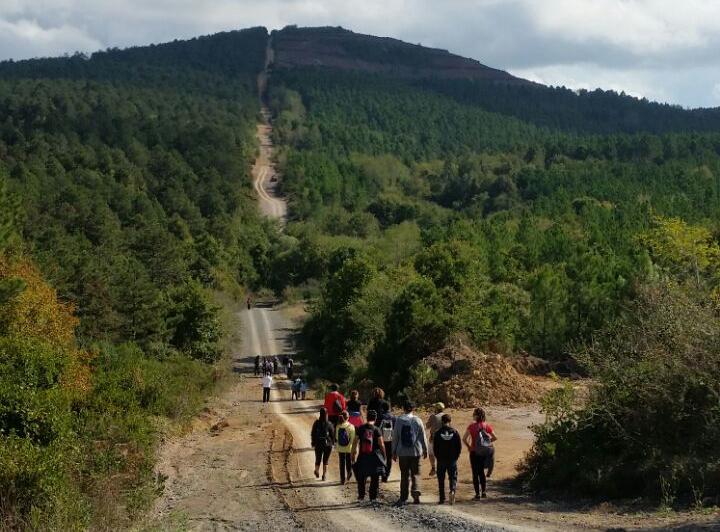 Çekmeköy Dayanışma Derneği Kuzey Ormanları'nda doğa yürüyüşü düzenledi