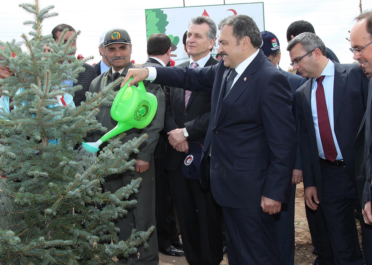 """Veysel Eroğlu: Ormanlar milletin """"emrine"""" verilecek, """"yol kenarları"""" ağaçlandıracak!"""