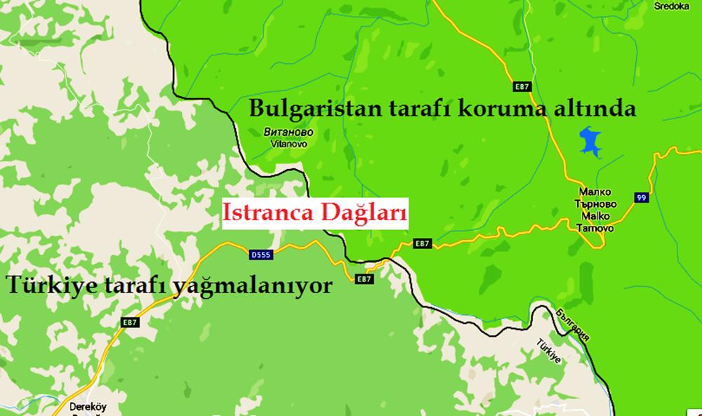 Istrancaların Bulgaristan tarafına geçmek isteyen hayvanlara engel