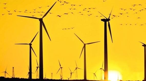 """Rüzgar neyi """"sürdürüyor"""" veya kapitalizmin """"sürdürülebilirlik"""" efsaneleri"""