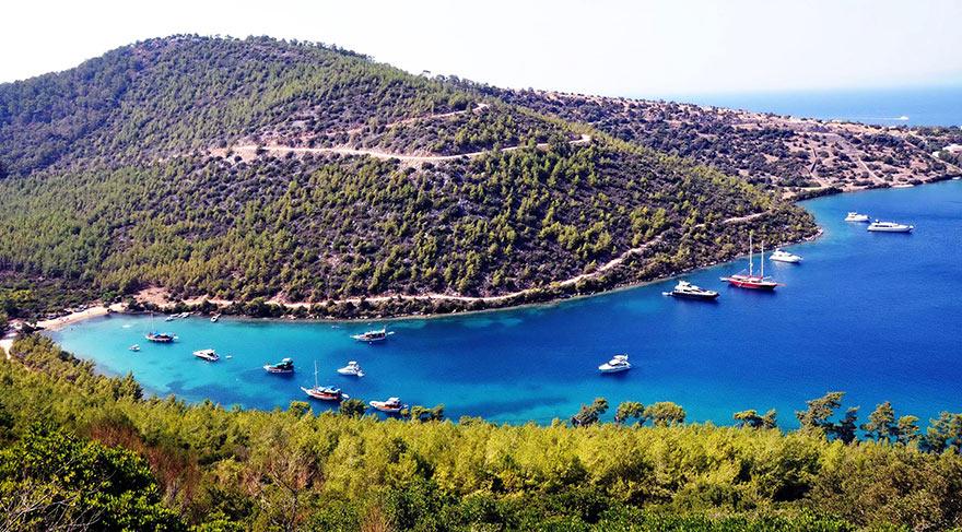 Meraları Erdoğan mı yakıyor?