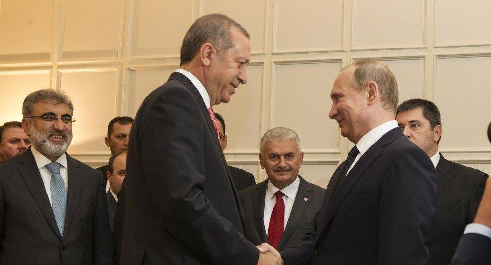 AKP ve Rusya, Kuzey Ormanları'nı katledecek boru hattı projesinde anlaştı!