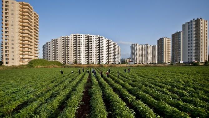 Tarım arazilerinin amaç dışı kullanımına 'af' geliyor