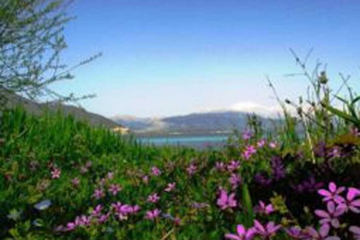 Türkiye'nin bitki ve hayvan haritası çıkarılıyor