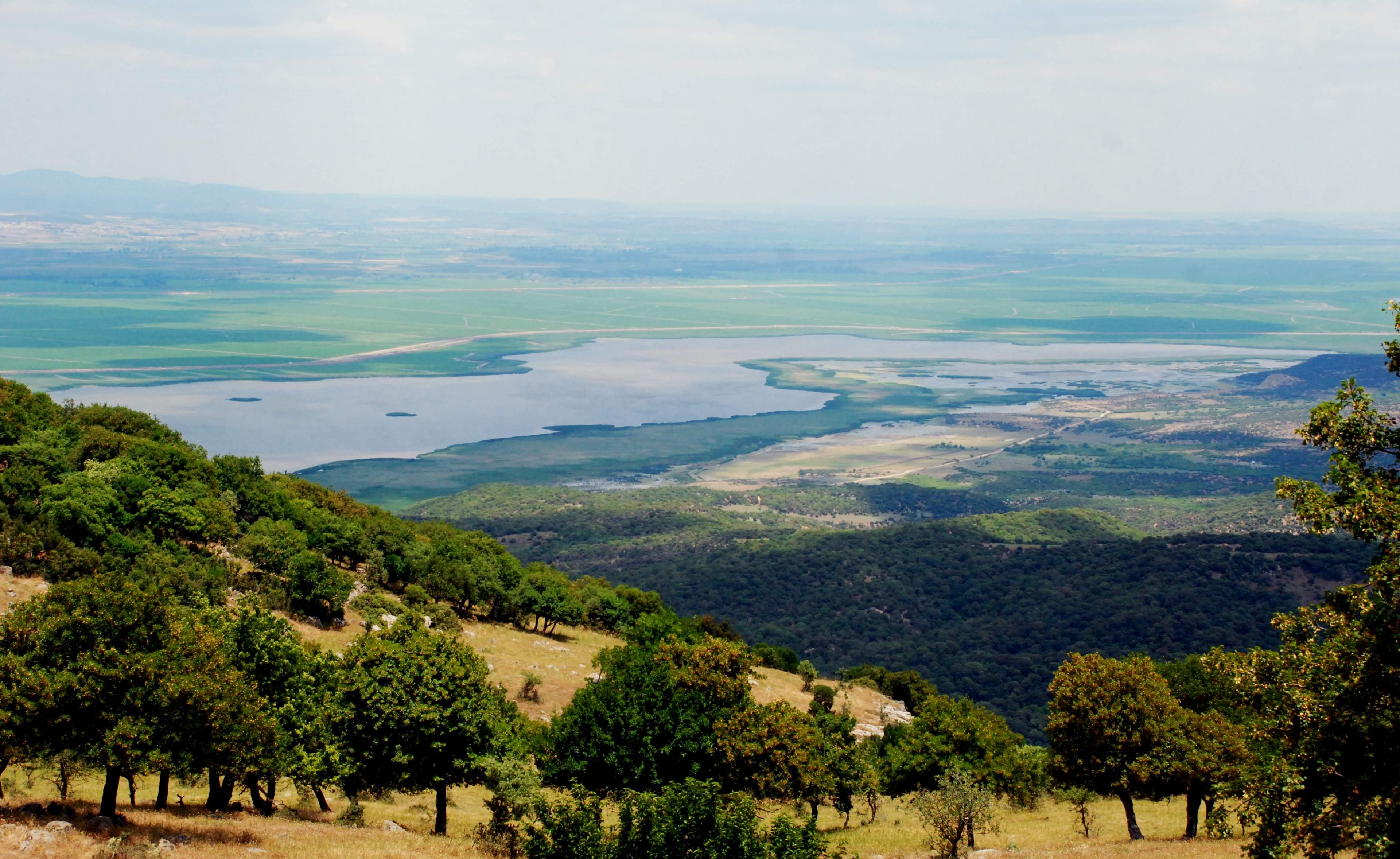 Gala Gölü Milli Parkı'nda 44 Binden Fazla Kuş Yaşıyor