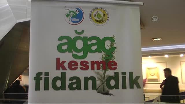 Orman Bakanlığı yılbaşı gelince ağaçları korumayı hatırlıyor!