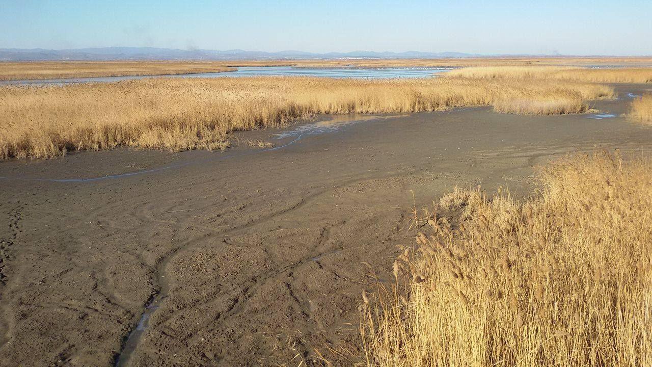 Gala Gölü kuraklık nedeniyle alarm veriyor!