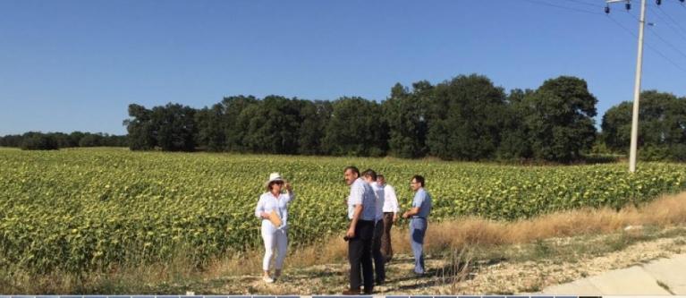 Keşan'da 100,57 hektar birinci sınıf tarım arazisi sanayi alanı olmaktan kurtarıldı
