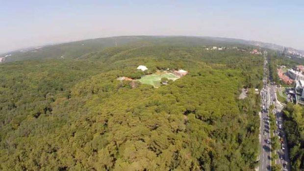 Yargı Fatih Ormanı'nın imdadına koştu: Bilgili-Doğuş Holding'in 'Park Ormanı'na izin yok