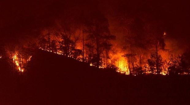 Sürmene Çamburnu yangınında rant şüphesi