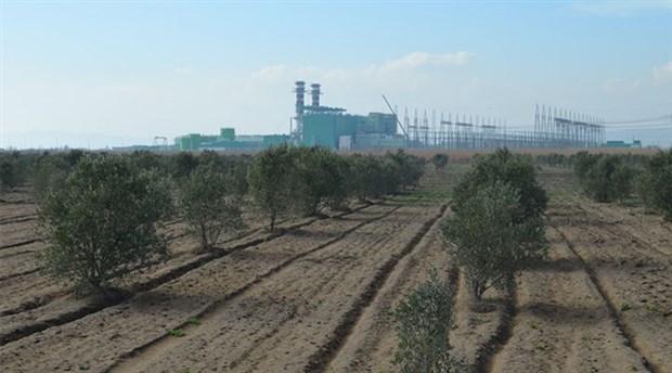 Türkiye 4 milyon hektar tarım alanını kaybetti