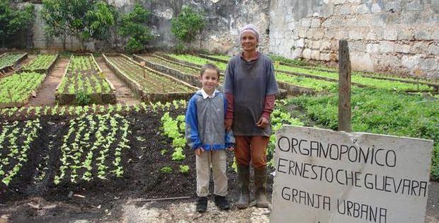 [Dünyadan Kent Bahçeleri] Küba: Ambargoya karşı Organopónicos