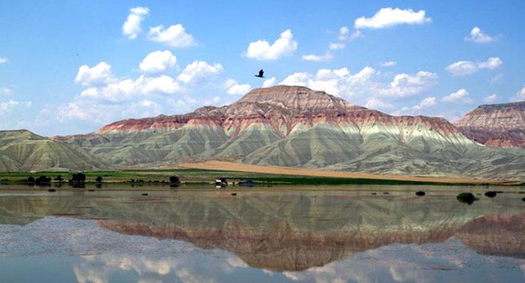 Nallıhan'da kuş cenneti yakınına termik santral: Cenneti 'cehenneme' çevirecek ve iklim değişikliğini hızlandıracak!