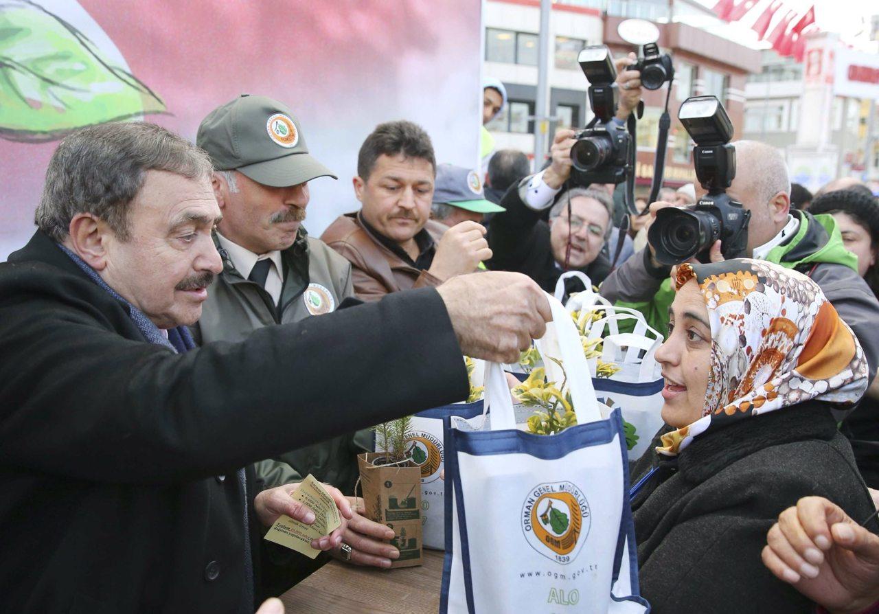 Veysel Eroğlu orman soykırımı yaptıkları Sarıyer'de vatandaşa fidan dağıttı!