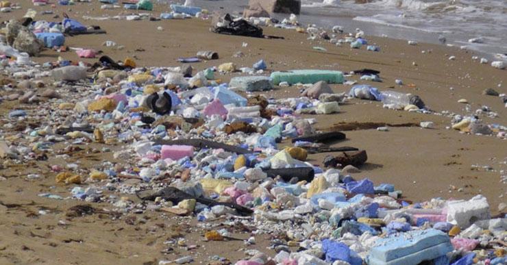 'Doğa katliamı'nda sıra denizde: Kilyos sahiline inşaat atıkları saçıldı