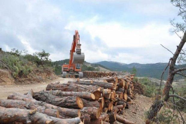 Türkiye Barolar Birliği ve EGEÇEP sit alanlarının talanına karşı dava açtı