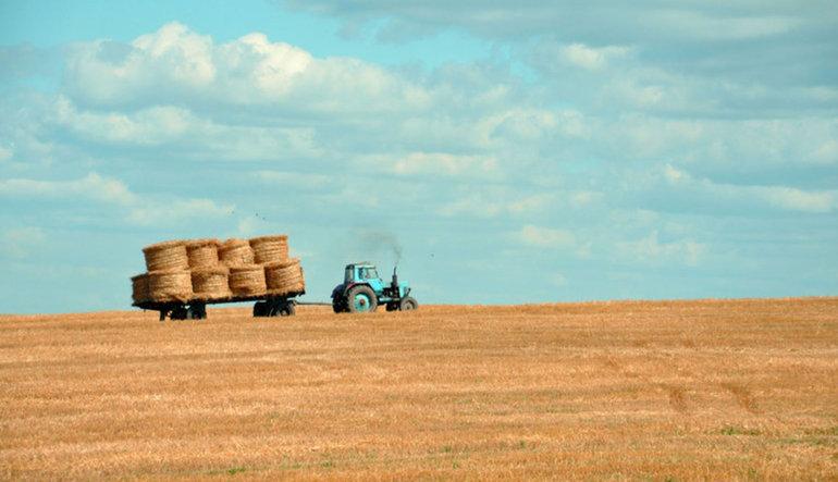 Türkiye 30 yılda 40 milyon dekar tarım arazisi kaybetti