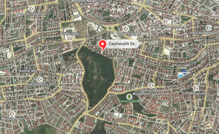 Bursa'ya bir avuç yeşili çok gördüler. Cephanelik korusu imara açılmasın!