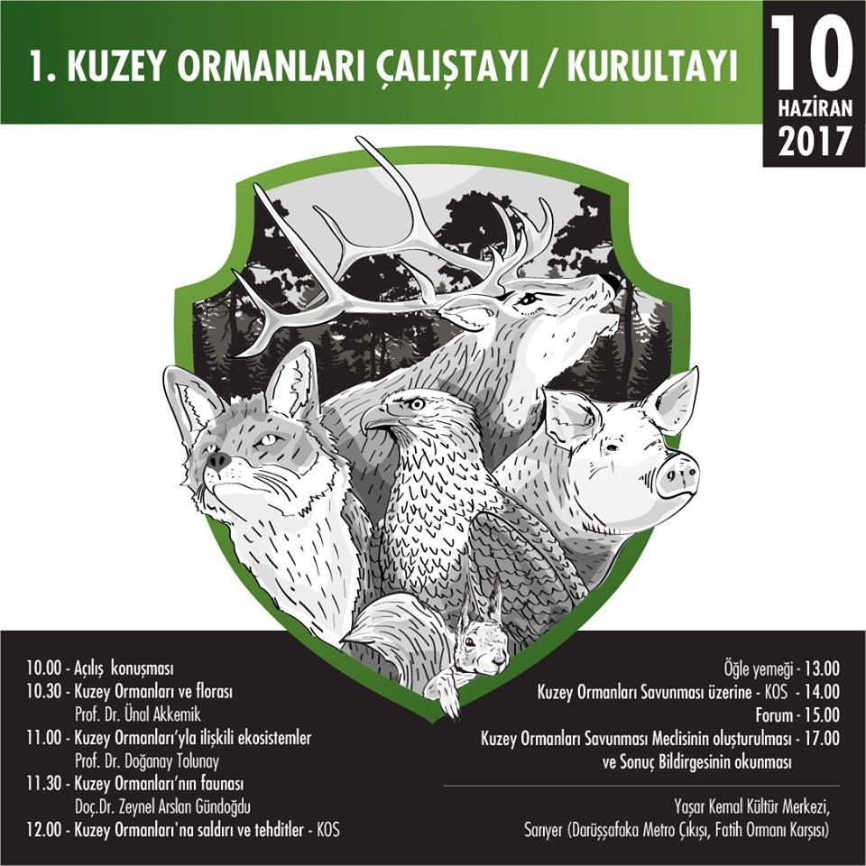 Kuzey Ormanları Çalıştayı, 10 Haziran Cumartesi günü, Yaşar Kemal Kültür Merkezi'nde yapılacak
