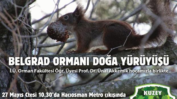 27 Mayıs Cumartesi Prof. Ünal Akkemik ile Belgrad Ormanı yürüyüşümüze davetlisiniz