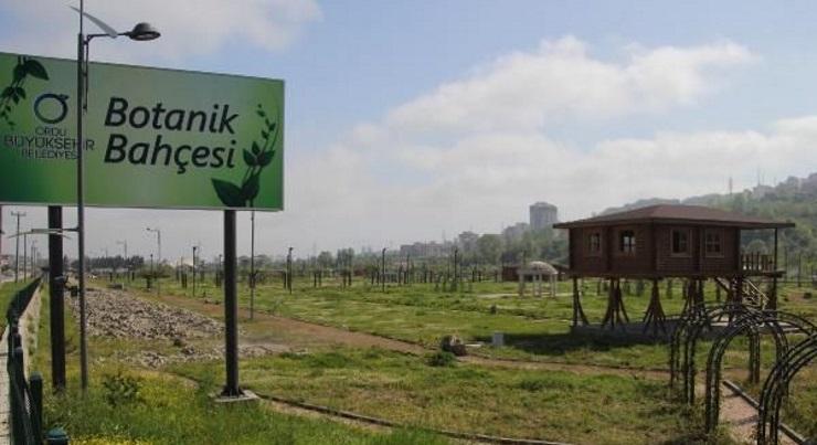 Yapboz cumhuriyeti: Ordu'da 15 milyon liralık botanik bahçesi açılmadan sökülüyor