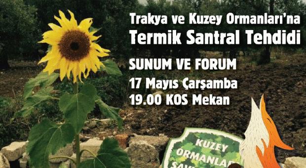 Trakya ve Kuzey Ormanları'na termik santral tehdidi: Çarşamba 19.00'da KOS Mekan'da sunum ve forum