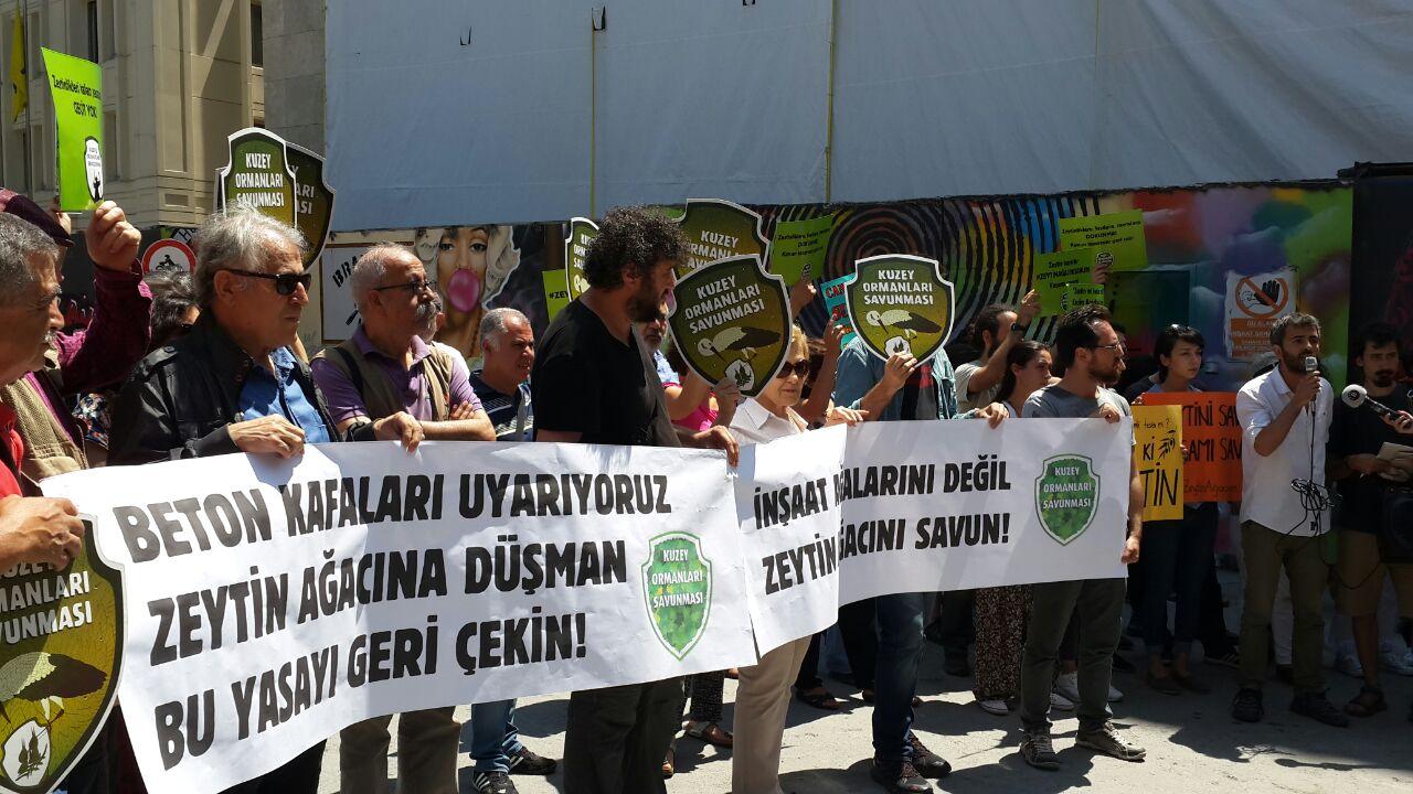 GS Meydanı'nda haykırdık: Sokakta, Meclis'te Zeytin Ağacını Savun!