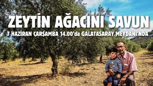 #ZeytinAğacınıSavun'maya Çarşamba 14.00'da Galatasaray Meydanı'na!