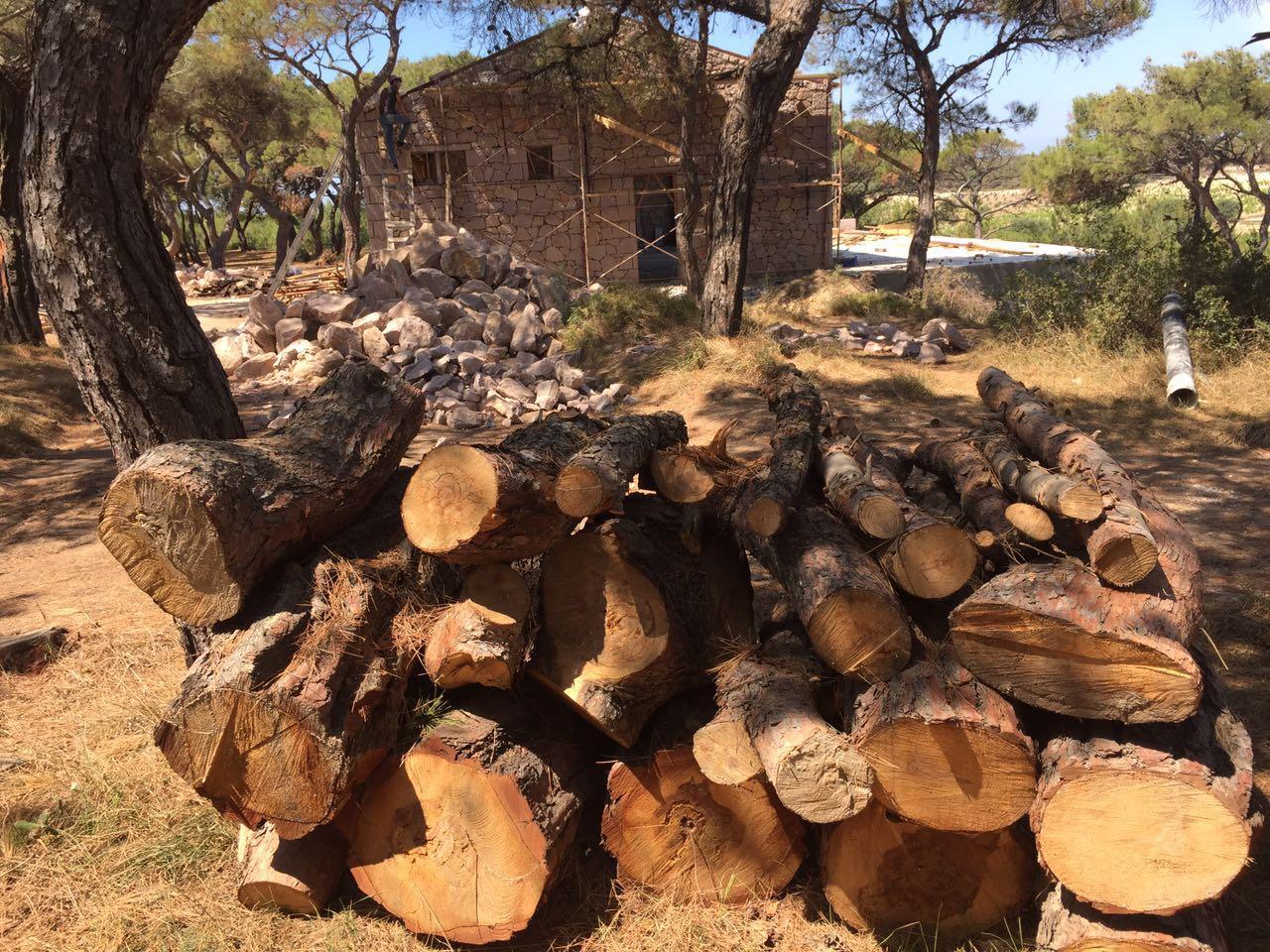 Bozcaada Pavli Çamlığı eğlence dekoru değildir. #OrmandaFestivalYapılmaz