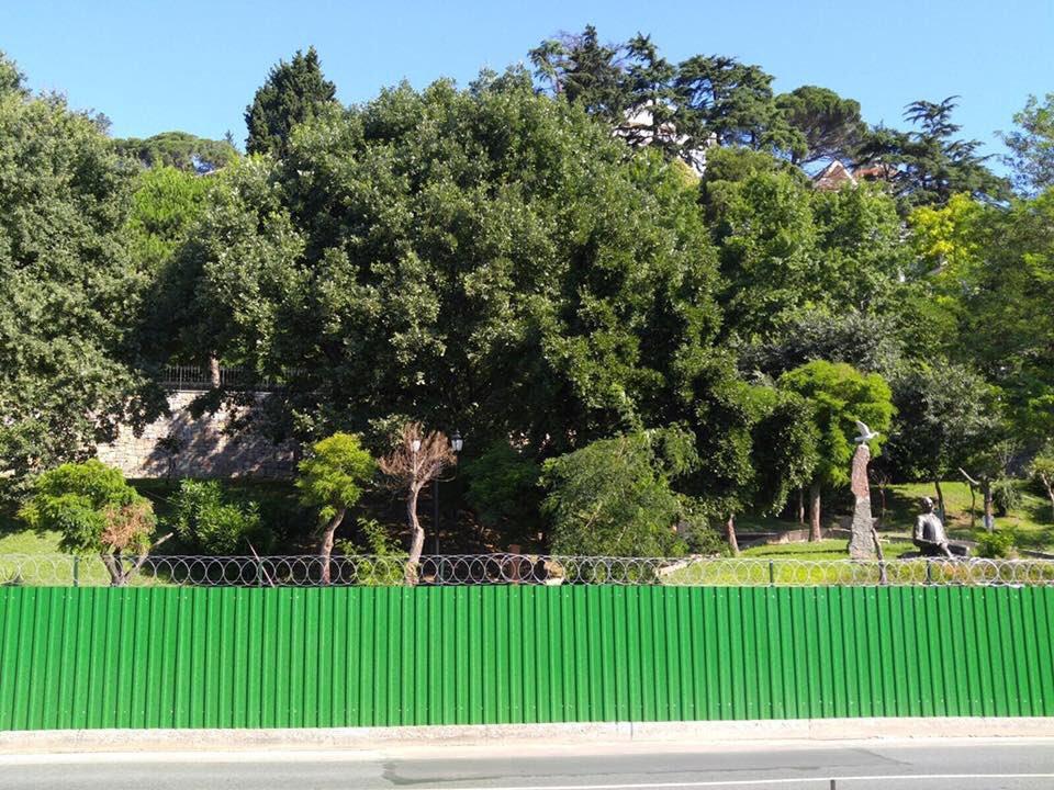 İstanbul yeşil alanda sonuncu çıkınca Uysal: Bazıları etraftaki ormanı da hesaba katıyor