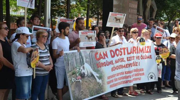 Hayvanseverlerden yurt çapında eylem: Dostlarımızı ölüme göndermeyiz