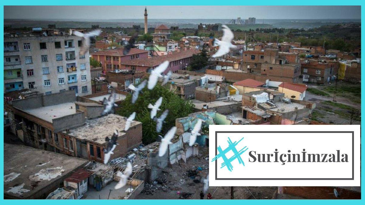 'Sur ortak dünyamız, yıkımı durduralım' kampanyası