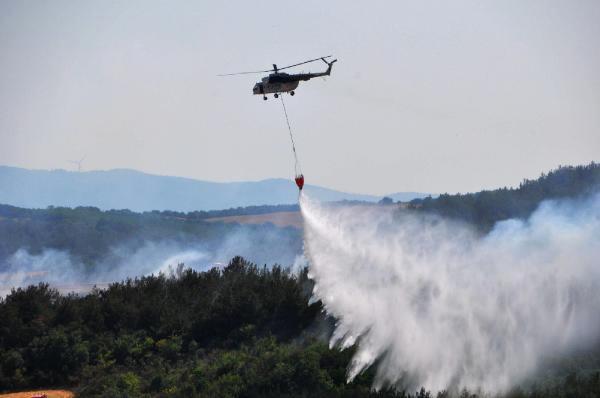 Tekirdağ Süleymanpaşa'da çıkan yangında 50 hektar orman tahrip oldu