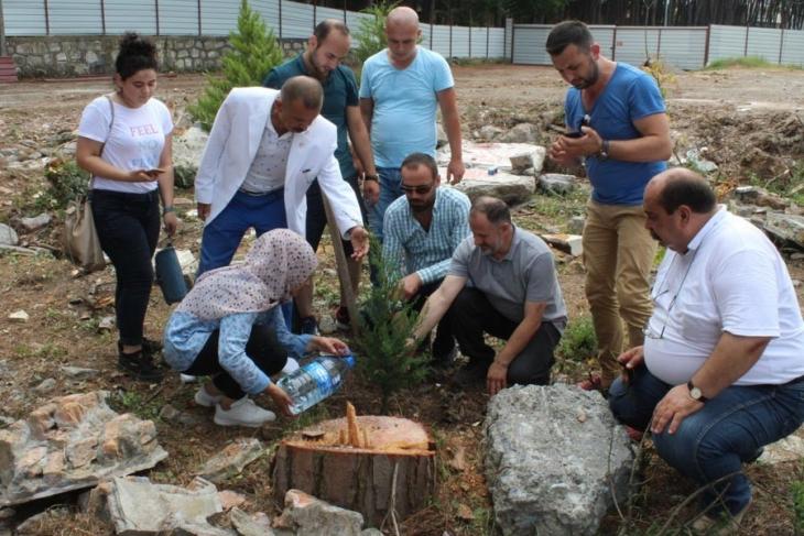 Ünye'de mesire alanına düğün salonu ve restoran yapmak için 15 çam ağacıkestiler