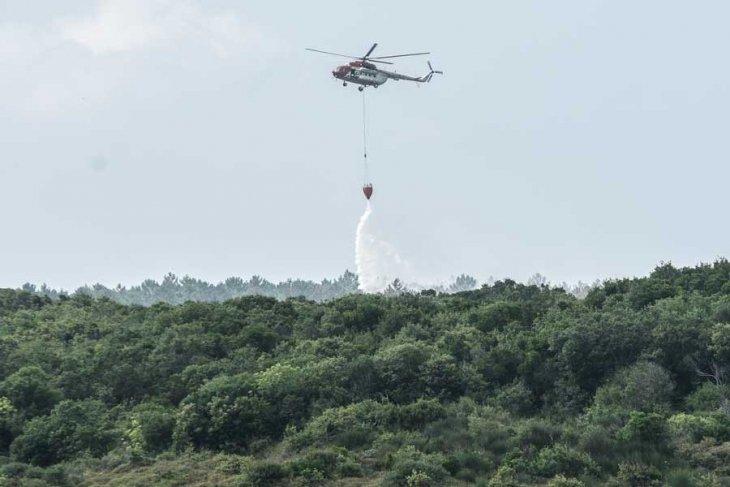 Kuzey Ormanları içinde bulunan Rumeli Feneri ormanlarında yangın çıktı, iki hektarlık orman alanı zarar gördü