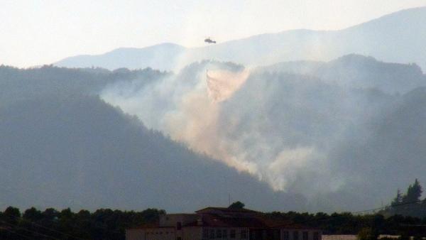 Piknikçi ateşi Hatay'da 5 hektar orman alanını yaktı