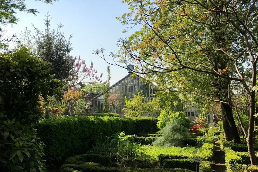 Botanik Bahçesi müftülüğe devredildi