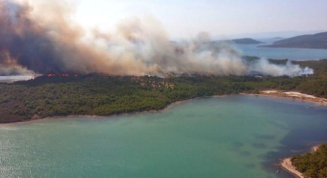 Ayvalık'ta Şeytan Sofrası'nın alt kısımlarında orman yangını çıktı
